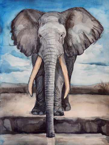 Elephant Sanctuary - Posters by Christopher Noel