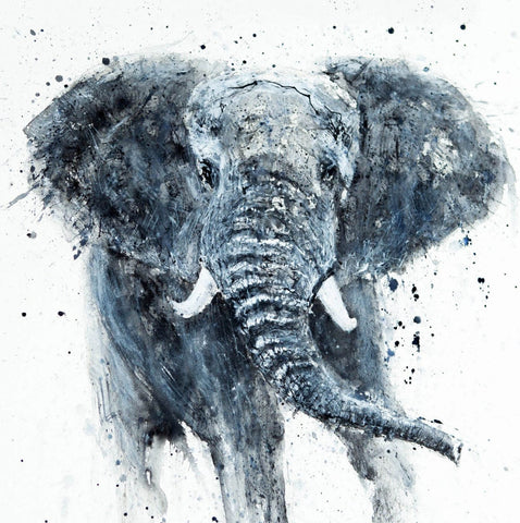 Elephant Watercolor Painting Poster Print