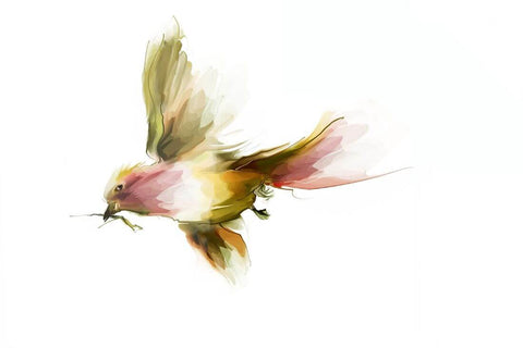 Flying Bird - Contemporary Painting - Bird Wildlife Art Print Poster