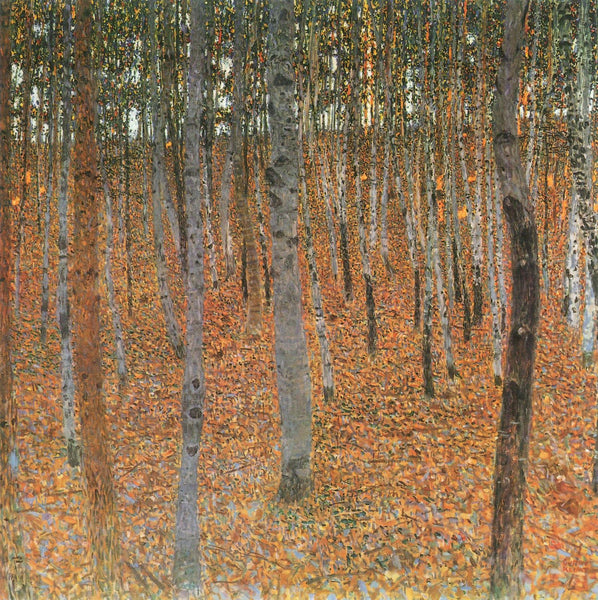 Forest Of Beech Trees - Art Prints