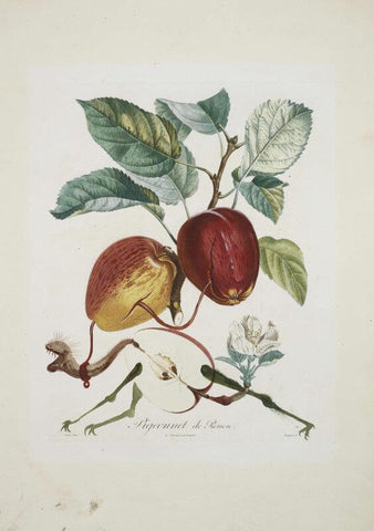 Fruit Series - Apple By Salvador Dali - Posters