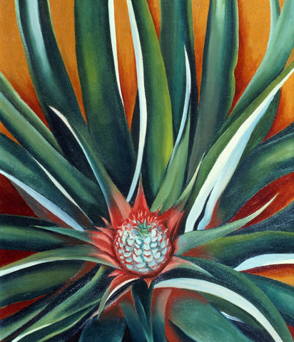 Pineapple Bud - Georgia OKeeffe