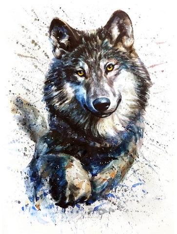 Gray Wolf - Watercolor Animal Painting