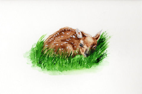 Hi, I'm Deer - Framed Prints