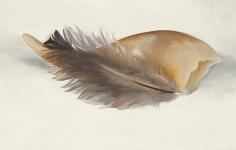 Horn And Feather - Georgia OKeeffe