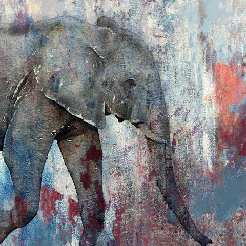 Indian Elephant Watercolor Painting Poster Print