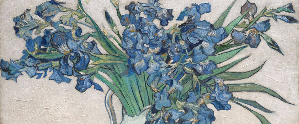 Irises - Vincent Van Gogh by Vincent Van Gogh | Buy Posters, Frames, Canvas  & Digital Art Prints