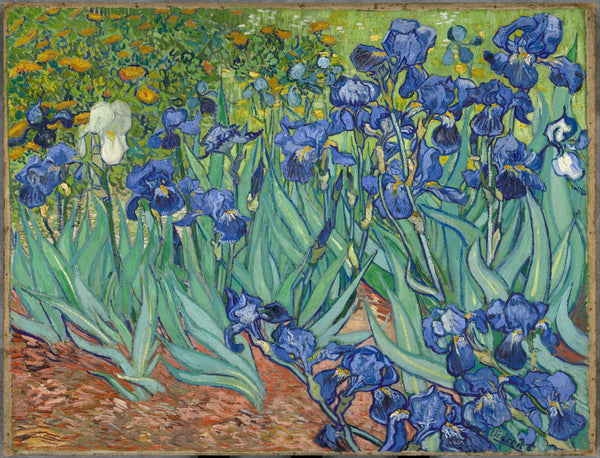 Artwork of Irises by Vincent Van Gogh