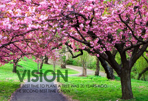 Motivational Quote: VISION