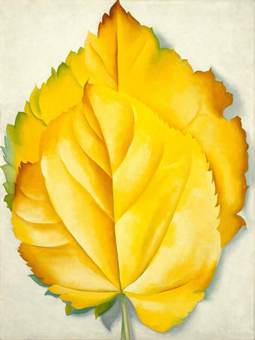 Yellow Leaves - Georgia Keeffe