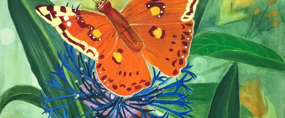 Orange  Butterfly - Contemporary Watercolor Painting Art Print by Federico Cortese | Buy Posters, Frames, Canvas  & Digital Art Prints