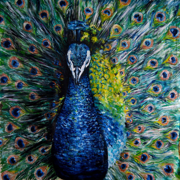 Peacock - Canvas Prints
