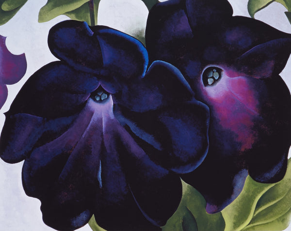 Artwork of Petunias by Georgia O'Keeffe