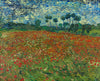 Poppy Field - Canvas Prints