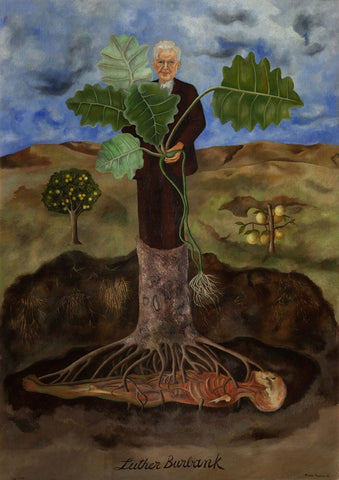 Portrait Of Luther Burbank (Retrato De Luther Burbank) by Frida Kahlo