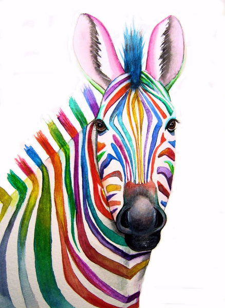 Rainbow Zebra - Canvas Prints