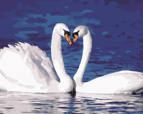 Swan Love by Ronan Hugo