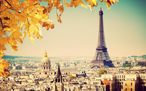 Autumn in Paris with Eiffel Tower