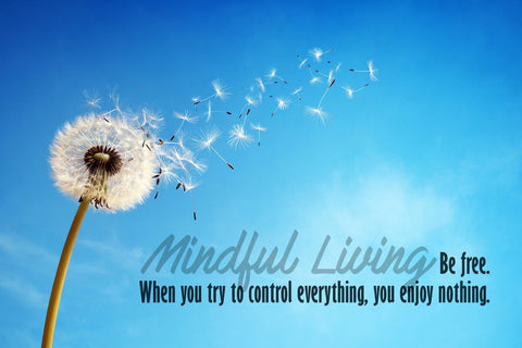 Motivational Poster - MINDFULNESS - When you try to control everything you enjoy nothing - Inspirational Quote by Sherly David