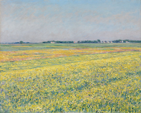 The plain of Gennevilliers, yellow fields - Art Prints