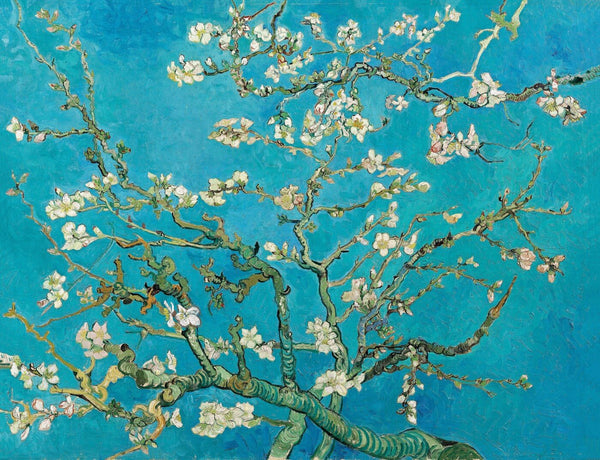 Artwork of Almond Blossoms by Vincent Van Gogh