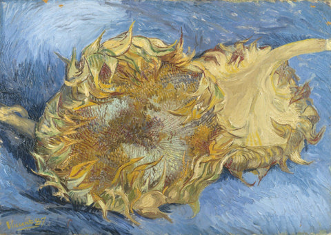 Vincent van Gogh - Two Cut Sunflowers, 1887 by Van Gogh