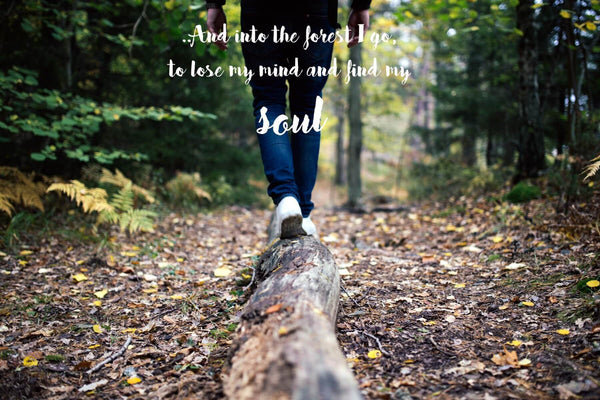 Wanderlust - Inspirational Quote - And Into The Forest I Go To Lose My Mind And Find My Soul - Art Prints