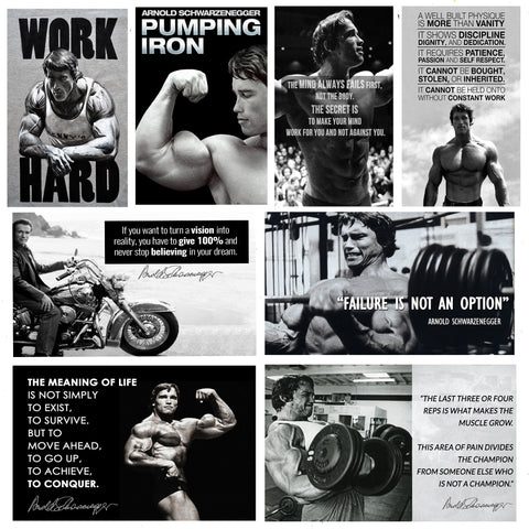 Set of 10 Best of Arnold Schwarzenegger - Poster Paper (12 x 17 inches) each by Joel Jerry