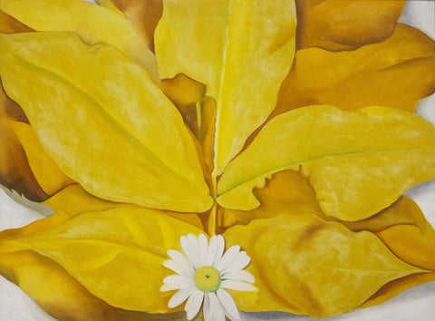 Yellow Hickory Leaves With Daisy - Georgia OKeeffe