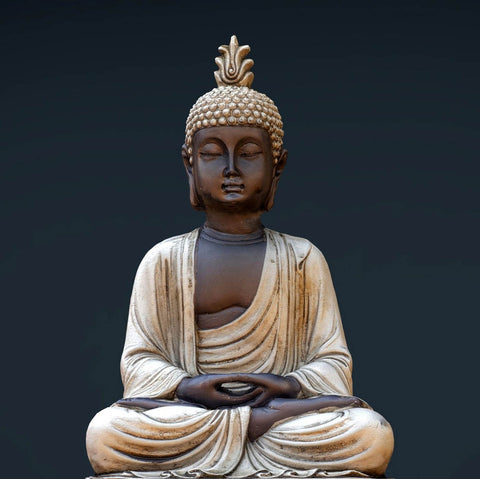 Gautam Buddha - The Enlightened One