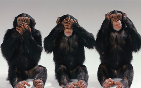 Speak No Evil, See No Evil, Hear No Evil by Christopher Noel