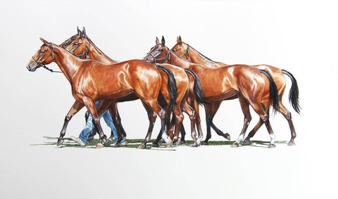 Four Horses In Watercolors