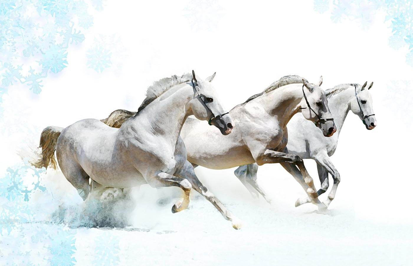 White Horses Running Posters By Joel Jerry Buy Posters Frames