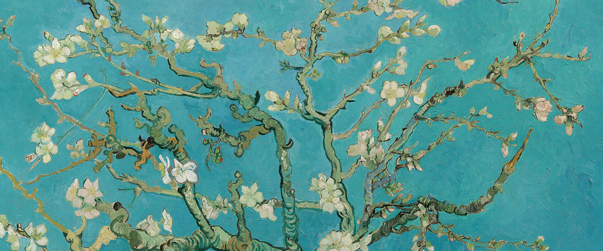 Vincent Van Gogh Artworks Collection | Buy Posters, Frames, Canvas, Digital Art & Large Size Prints Of The Famous Old Master's Artworks