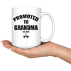 Promoted to Grandma Promoted to Grandpa Mug