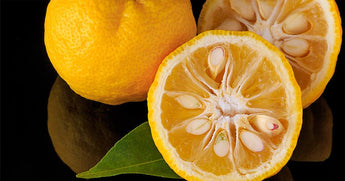 INGREDIENT SPOTLIGHT: THE VERSATILITY OF YUZU
