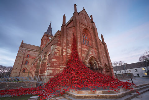 Poppies Weeping Window Visits Kirkwall