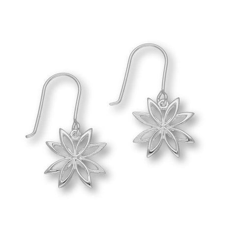 Akiha Silver Earrings E1464