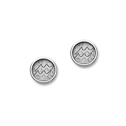 Zodiac Silver Earrings E1849 Aquarius
