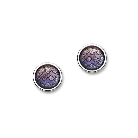 Zodiac Silver Earrings EE579 Aquarius
