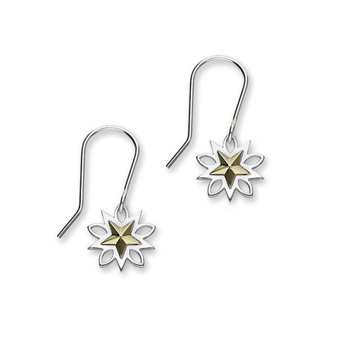 Anniversary Silver/Gold Earrings E1883