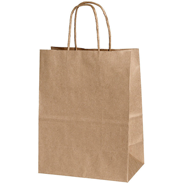 Kraft Paper Gift Bags in Natural Kraft - set of 15