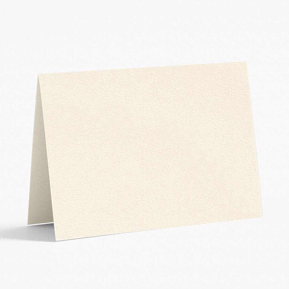 Italian Luxe Creamy White Ivory Place Cards - 50 pc