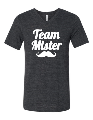 Team Mister Gender Reveal 3005 Premium V-Neck T-shirt Slogan Humorous T