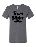 Team Mister Gender Reveal 3005 Premium V-Neck T-shirt