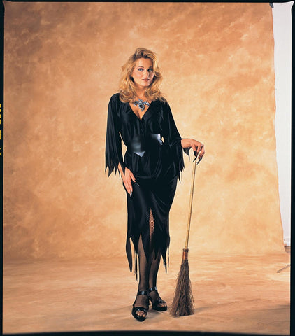 Womens Witch Costume - HalloweenCostumes4U.com - Adult Costumes