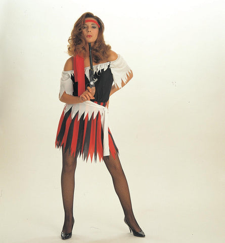 Womens Pirate Wench Costume - HalloweenCostumes4U.com - Adult Costumes
