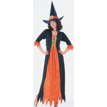 Womens Gothic Witch Costume - HalloweenCostumes4U.com - Adult Costumes