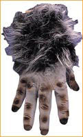 Grey Hairy Hands - HalloweenCostumes4U.com - Accessories