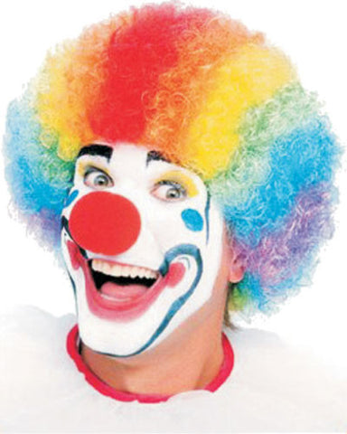 Rainbow Clown Afro Wig - HalloweenCostumes4U.com - Accessories